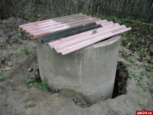 Жители деревни Люта Дновского района живут без питьевой воды.
