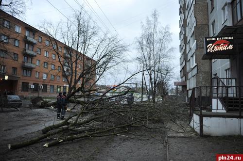 Интим Псковская улица досуг метро Парнас спб