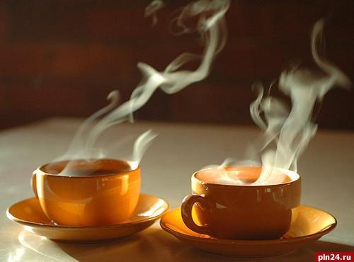 Сколько чашек зеленого чая можно пить в день - 9d3e6