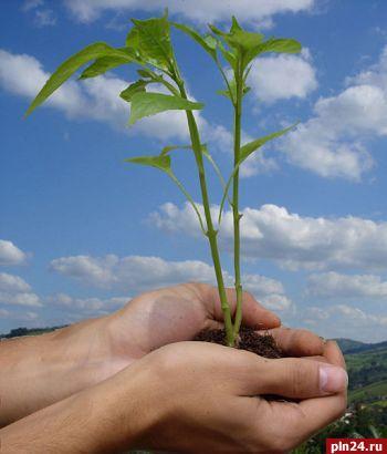 Во всемирный день окружающей среды