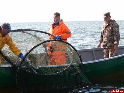 новости промысловой рыбалки
