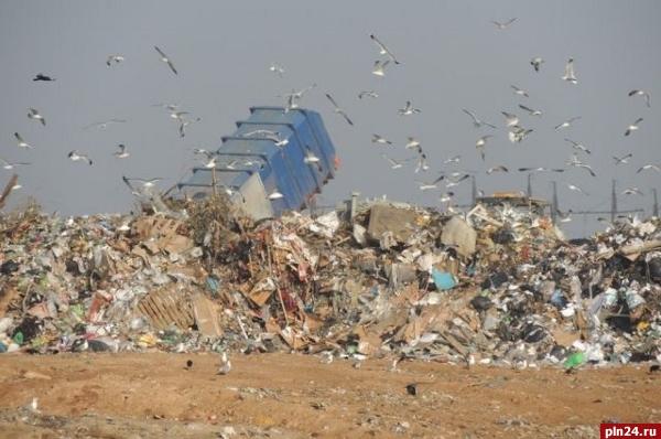 Порховичи составили петицию против приема мусора из Пскова