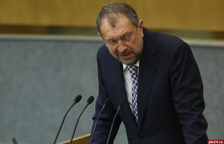 Резник пока единственный самовыдвиженец на выборах, который проходит в Госдуму