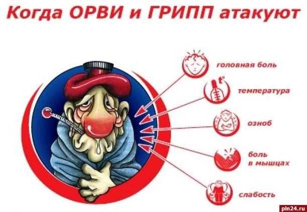 Занеделю сгриппом иОРВИ госпитализировано 79 граждан Тульской области