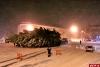 Установка новогодней елки в Пскове (ФОТО)