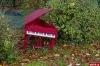 «Рояль в кустах» для губернатора
