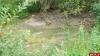 Прокуратура обнаружила, что в одном из пожарных водоемов Дновского района нет воды
