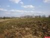 Псковские археологи пытаются приостановить коттеджное строительство в Выбутах