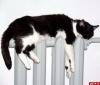 Все дома Пскова подключат к теплу в течение трех дней