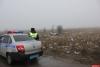Полиция и ГИБДД устанавливают обстоятельства смертельного ДТП в Псковском районе. ФОТО