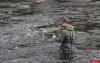 Как правильно рыбачить взабродку весной?