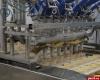 Участником «Выставки промышленников Псковской области» станет «Фабрика Мороженого»
