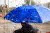 Дожди и грозы возможны завтра в Псковской области