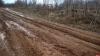 Лесовозы продолжают ездить по дороге Заянье — Шавково в Плюсском районе, несмотря на запрет