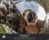 В Псковском Доме ремесел откроется фотовыставка Русского географического общества «Самая красивая страна»