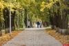 Вице-премьер Дмитрий Козак поддержал инициативу по строительству псковского парка за 3 млрд рублей