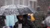 Мокрый снег и порывистый ветер возможны в понедельник в Псковской области