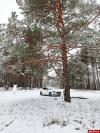 Интерактив: Единственная поляна в Корытовском лесопарке стала местом парковки автохамов
