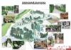 Обнародован проект парка «Петровский» в Великих Луках