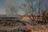 Особый противопожарный режим вводится на территории Псковской области