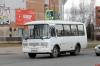 В Пскове и в Великих Луках запустили дневные автобусы