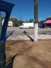 Фотофакт: Жители Печор жалуются на мусор, оставленный торговцами после ярмарки