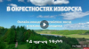 Состоялся онлайн-концерт российских рок-звезд и псковской молодежи. ВИДЕО