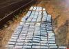 Порядка 2,5 тысяч пачек сигарет нашли псковские пограничники в поезде