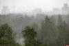 До +23 градусов и дожди обещают псковские синоптики 10 июля
