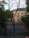Житель Пскова просит спилить опасные деревья на улице Труда