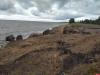 Берег Чудского озера перекопали неизвестные