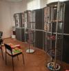 Выставка новых находок археологов откроется в Пскове 17 августа