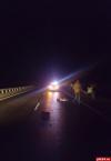 Обезображенный труп мужчины нашли на дороге в Новосокольническом районе