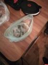 Псковича с марихуаной задержали полицейские