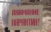 Карантин по бешенству введен в Новоржевском районе
