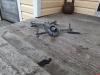 Пограничники задержали псковича с квадрокоптером в Печорском районе
