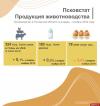 Производство скота и птицы на убой выросло в Псковской области