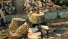 Обязательную фотосъемку при заготовке дров хотят отменить