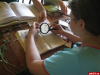 В летнюю школу «Юннат» приглашают учащихся из Пскова