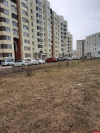 Покрытый мусором газон перед домом на Рижском проспекте занесли на «Доску позора»