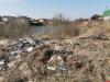 Интерактив: Собака среди мусора в Новой Гоголевке
