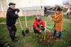Более 20 сосен высадили на субботнике в Великих Луках
