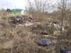 Переулки Псковстроя попали на «Доску позора» из-за свалки