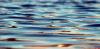 Тонувший в реке Великой в Пскове ребенок скончался в реанимации