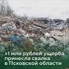 Росприроднадзор оценил в миллион ущерб от свалки в Псковской области