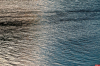Погибшую великолучанкус утюгом в рюкзаке нашли в реке Плюсса