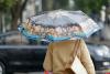До 14 градусов тепла и дождь прогнозируют псковские синоптики 15 сентября